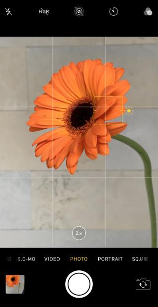 iphone x prise de photo de fleur