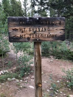 This is the wooden sign indicating the Colorado Trail and the trail to reach Mt. Shavano and Tabeguache Peak.