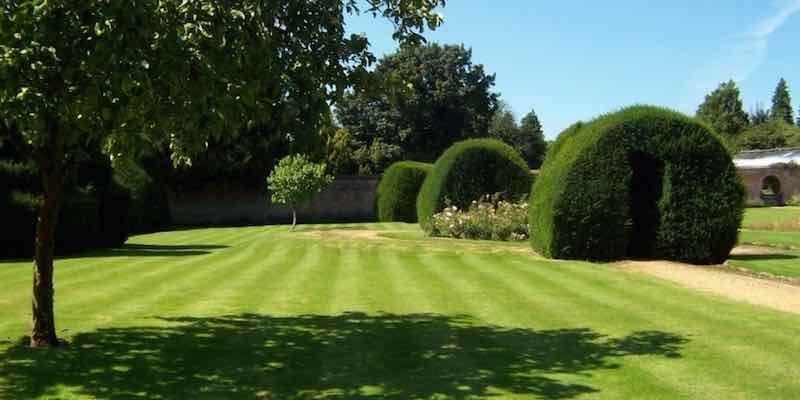 Garden maintenance service in Higham ferrers, Raunds, Rushden, Irthlingborough, Thrapston