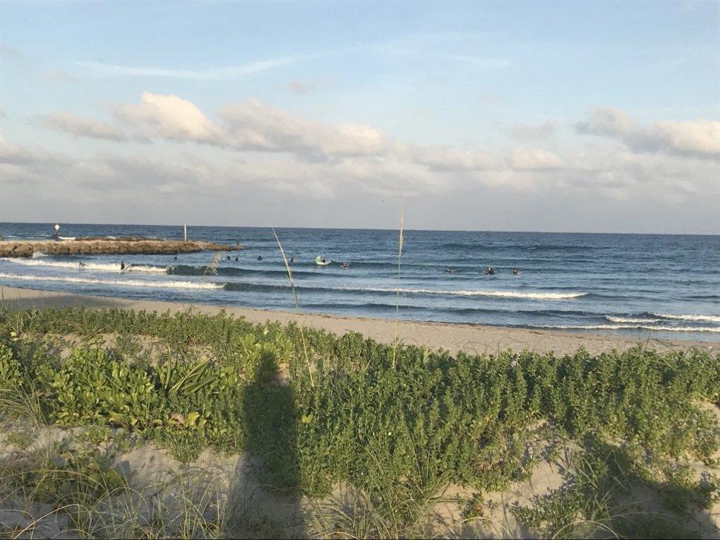 Knee high surf in Boca Raton