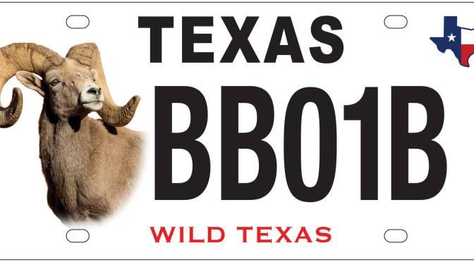 License For Bighorns