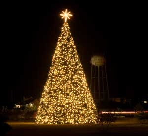 Image result for lights on christmas tree