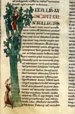 Moralia in Job, 1111, Dijon, Bibliothèque Municipale Mss. 169-173