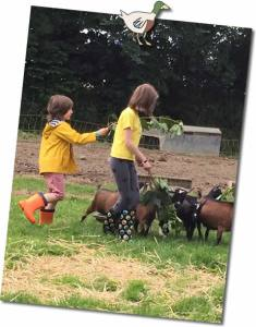 Regular visiting children feeding leaves to the goats at Higher lank Farm allergy friendly holidays