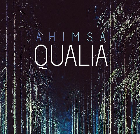 Ahmisa