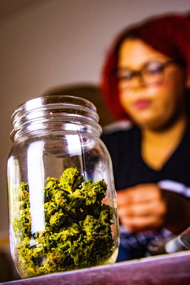 Higher Yields Consulting The Future of Cannabis in the U.S. — Emerging States in the Industry