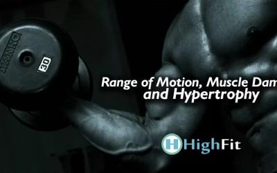 Amplitude de Movimento, Dano Muscular e Hipertrofia