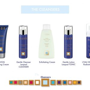 The Cleansers