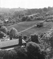 Horticulture in the Highgate Bowl, mid 20th century