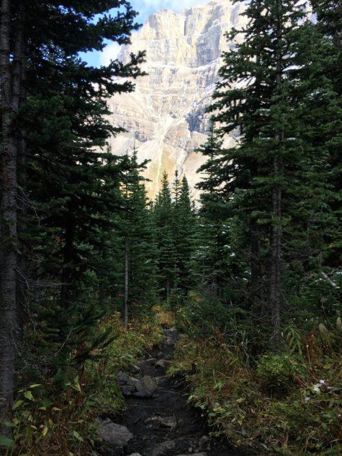 Bourgeau Lake and Harvey Pass, Banff National Parl