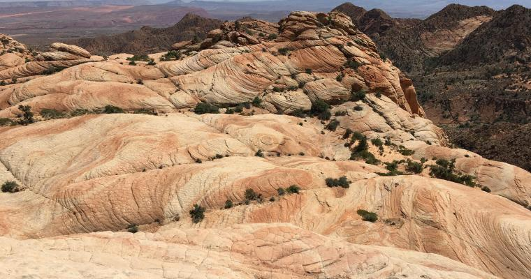 Yant Flat and Candy Cliffs {Red Cliffs National Conservation Area}