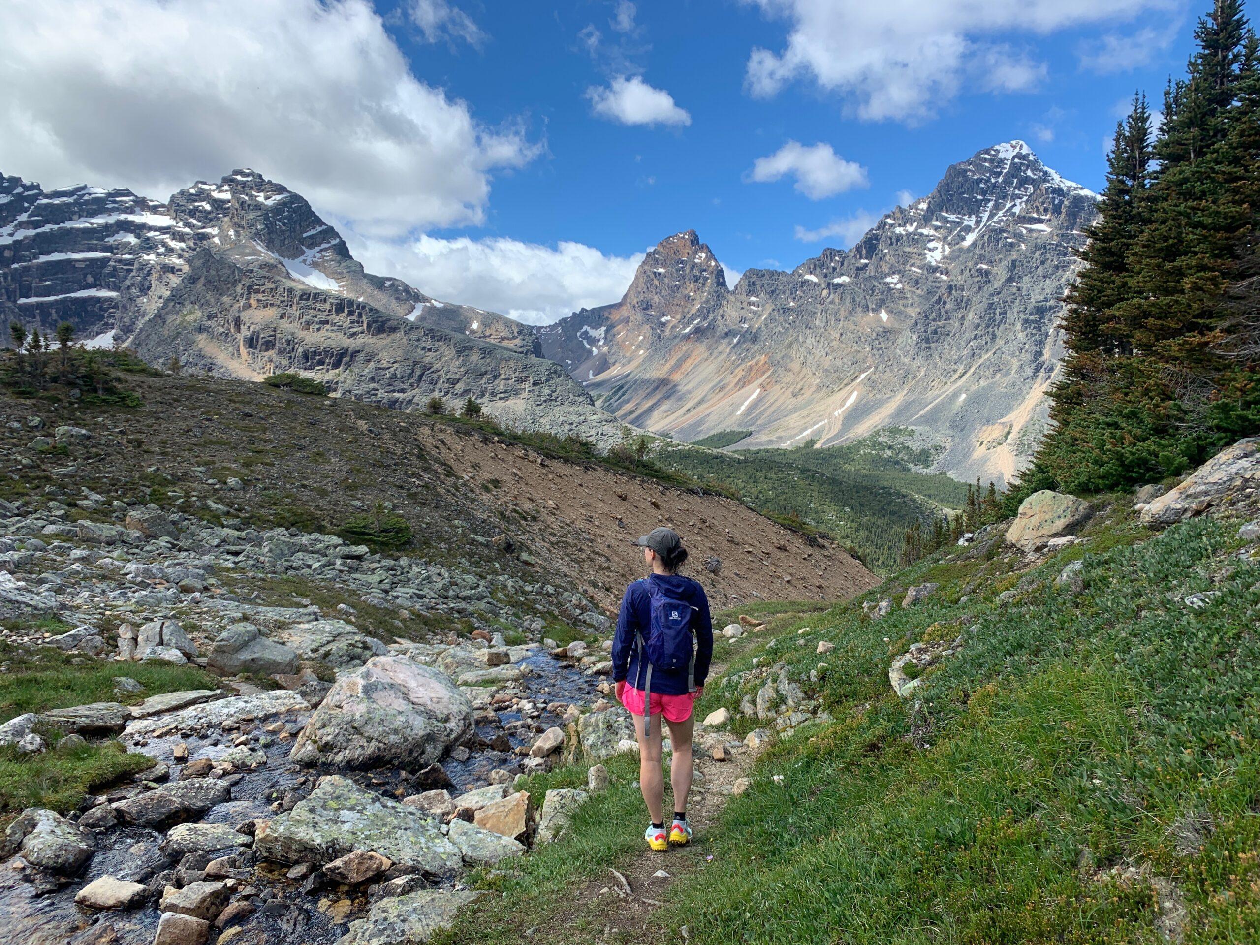 Verdant Pass {Jasper National Park}