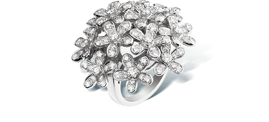 Socrate bouquet ring