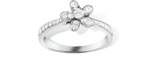 Socrate ring