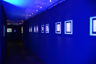 Jewellery & Art Exhibit - ambiance.