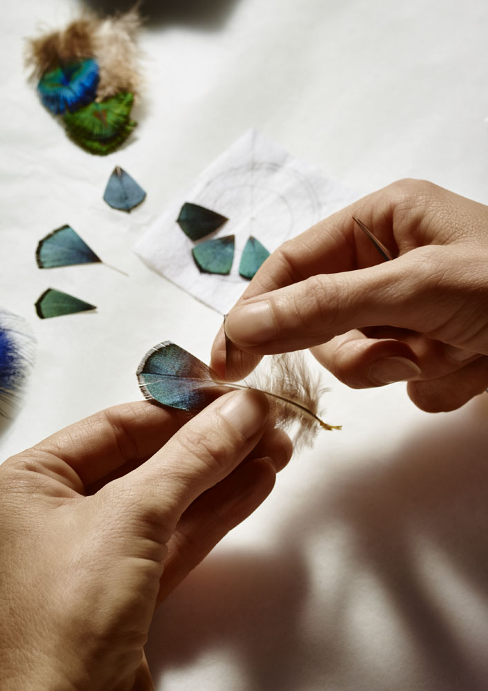 Working with Lady Amherst's pheasant feathers.