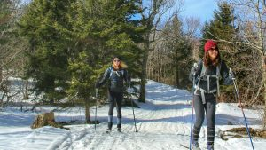 Cross country skiing on the Cheat Mountain Trail
