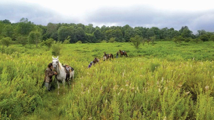 Horseback - Break in the Wilderness