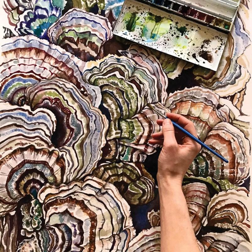 WV art - Turkey Tail mushrooms
