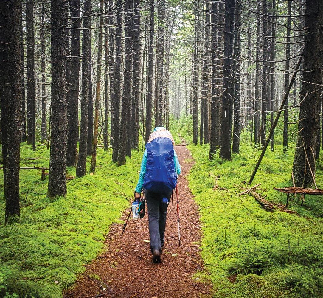 Sufferfest - Cranberry Wilderness