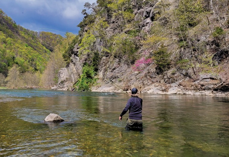 Wade Fishing - South Branch Potomac