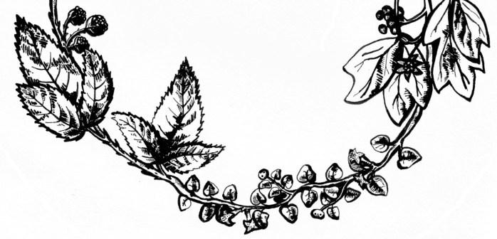 Plant Logo Cropped2
