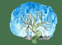 transparent placenta art