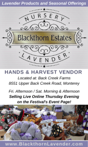 Highland County, Virginia, Blackthorn Estates, lavender, gifts, Hands & Harvest Festival, vender, Back Creek Farms, holiday, Christmas, gift, gifts, present, presents, product, local, products
