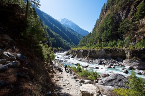 A sherpa porter makes his way up the trail between Jorsalle and Namche Bazaar and alongside the beautiful Dudh Kosi River.