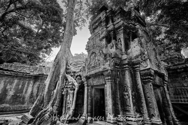 ST.20903.Siem Reap 158 of 174