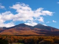 落葉松の黄葉と冠雪した八ヶ岳20141103_3