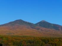 落葉松色に染まる西岳と網笠山