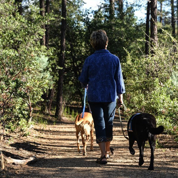women walking dogs on hiking trail