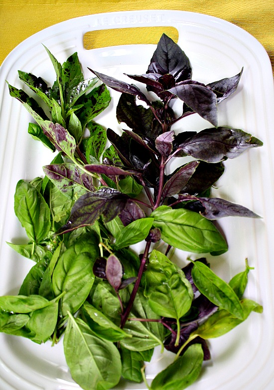 Purple Pesto