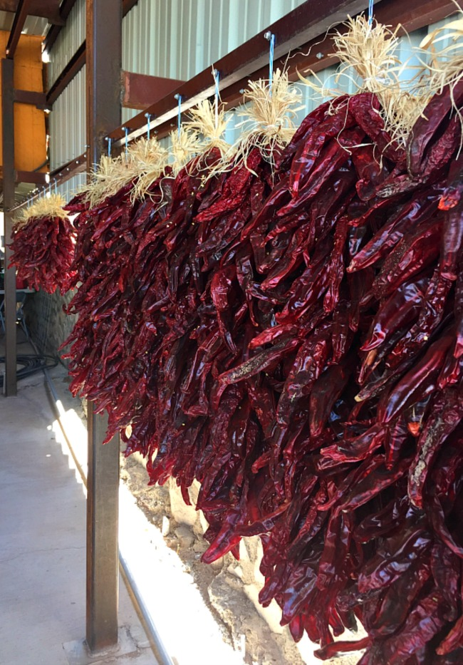 A line of chile ristras in Hatch New Mexico