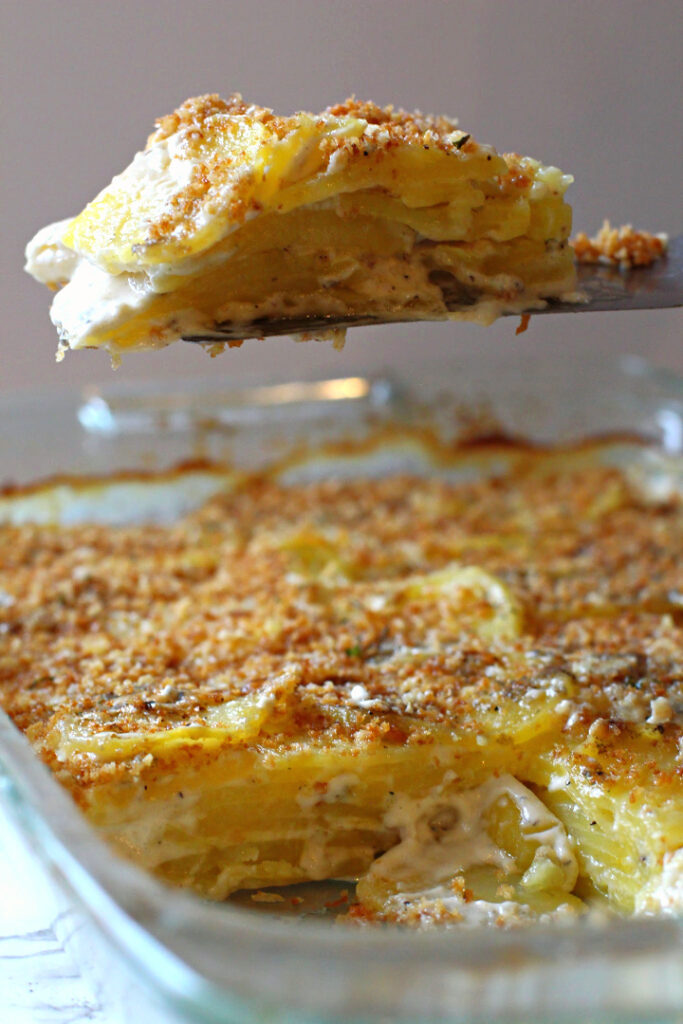 Blue Cheese Potato Casserole Topped with Panko Bread Crumbs.