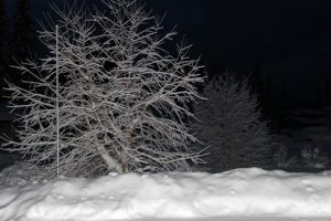 Read more about the article Why Alaskans Look Forward to Snow in October
