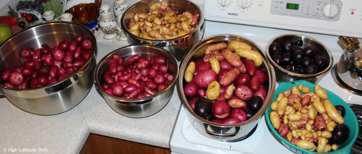 Alaska grown potatoes