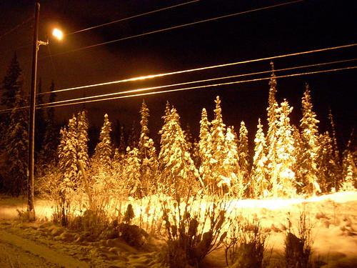 illuminated ski trails in Fairbanks, Alaska