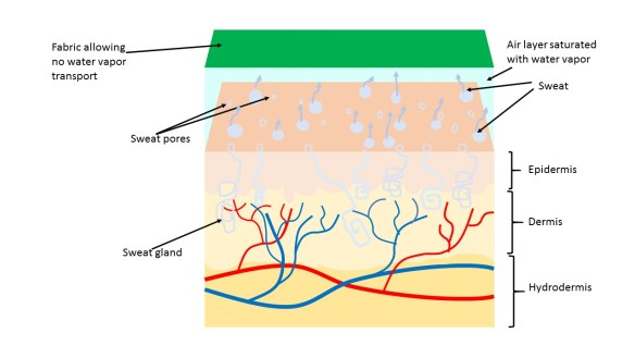 Cool Jams Inc. uses MTS fabric for thermal comfort sleep ... Fabric Schematic Diagram on