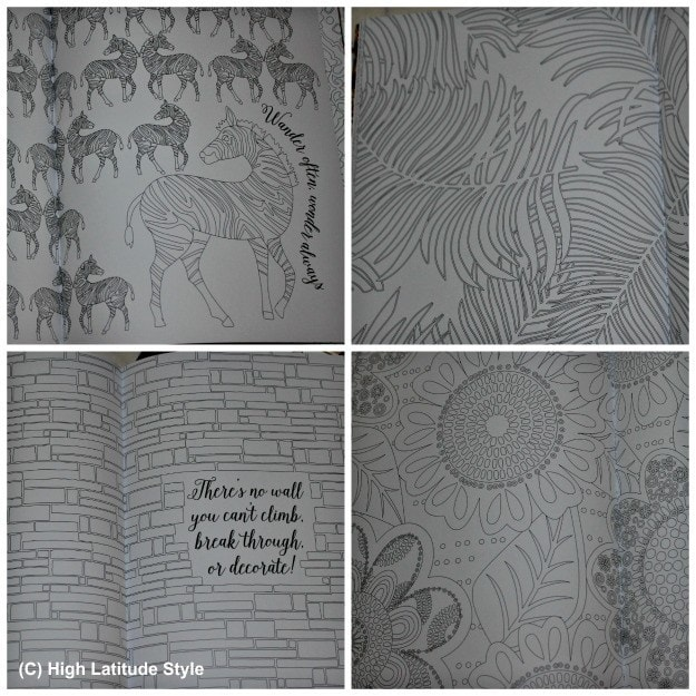4 examples of coloring pages with different skill levels