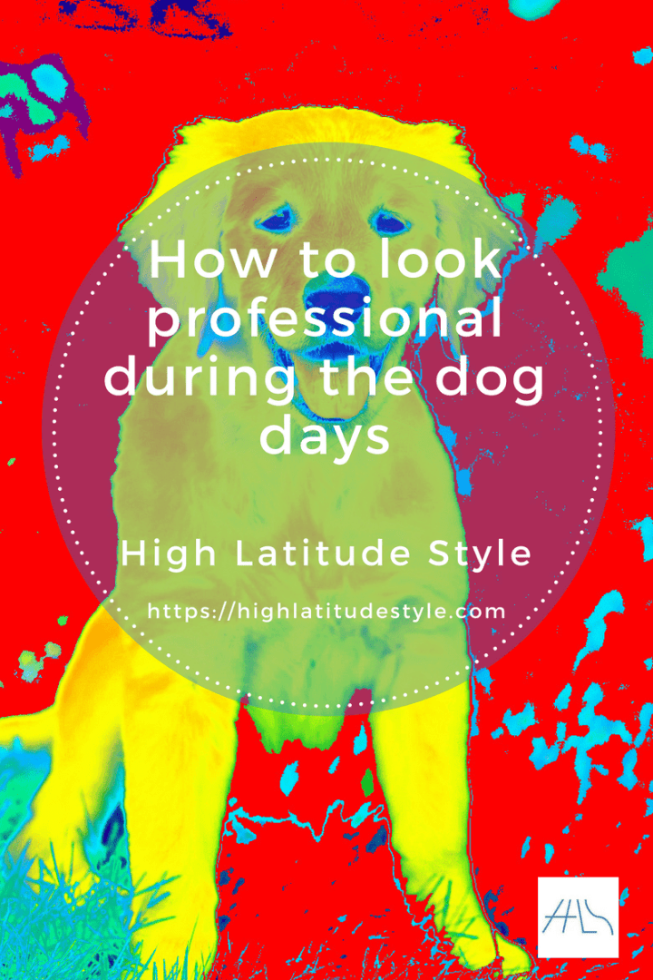 #careeroutfits #meetinglooks #summerworkoutfits how to look professional during the dog days at a meeting