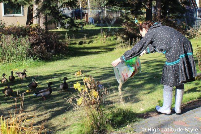 Alaskan woman in rubber shoes feeding ducks in the yard
