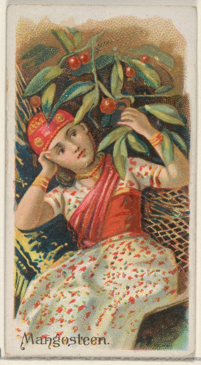 girl in sari with berry pattern