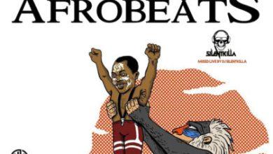 Photo of DJ SilentKilla – The Rise of AfroBeats Mix