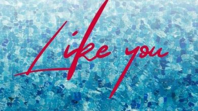 "Photo of May D – ""Like You"""