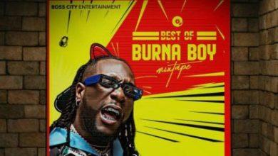 Photo of DJ Tuzo – Best Of Burnaboy Mix