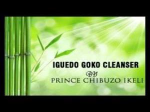 Prince Chibuzo Ikeli (Chisco) - Dr Iguedo Goko Cleanser