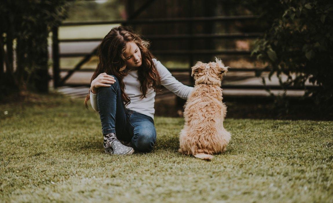 a highly sensitive child pets a dog