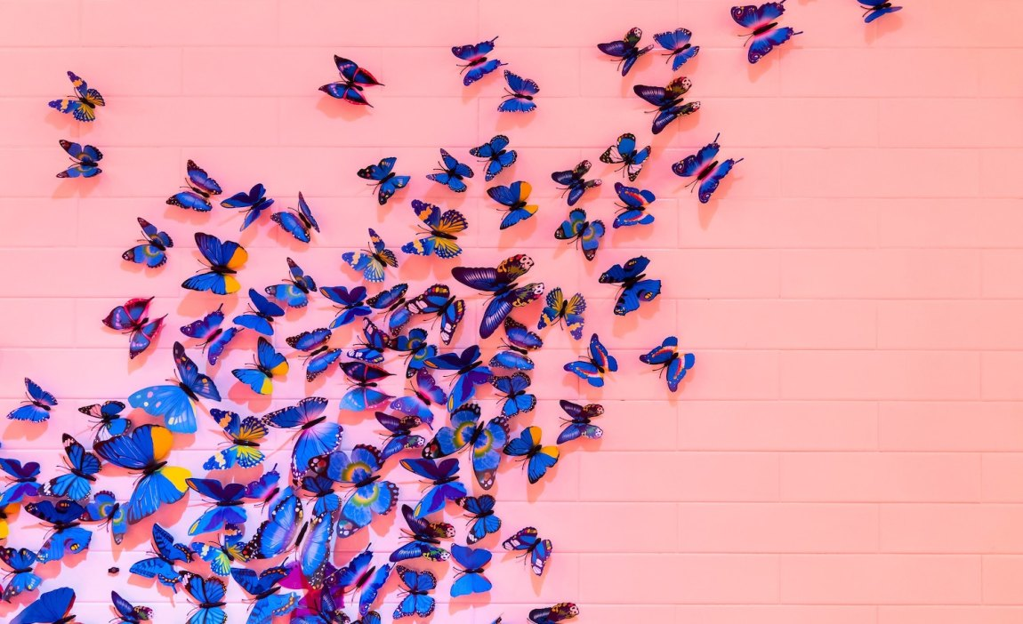 butterflies that represent how being highly sensitive is a divine gift